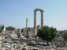 Templo de Dídima
