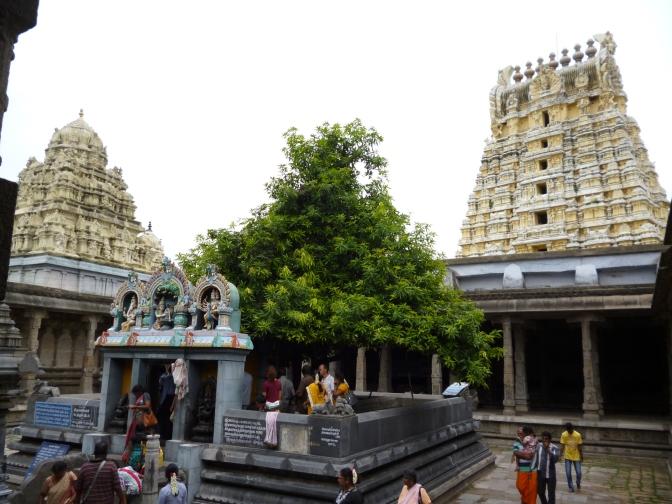 INDIA: TAMIL NADU: ETAPA 2: KANCHIPURAM